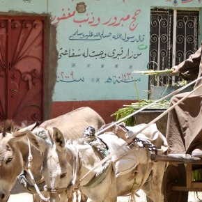 Opper-Egyptische zomer