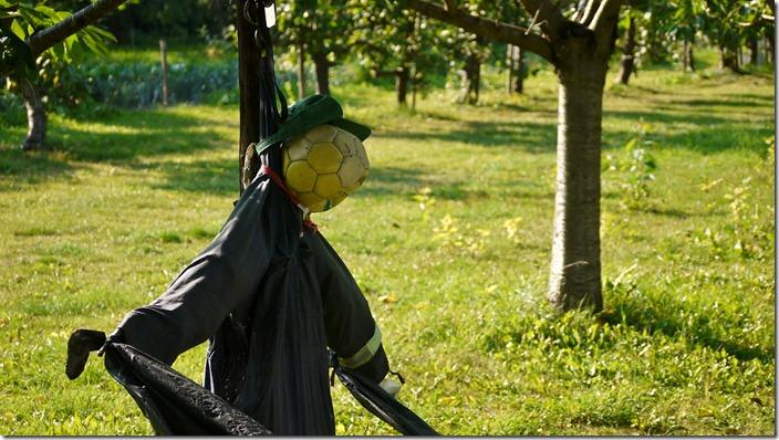 P1520705 vogelverschrikker strawman (c) willemjdewit