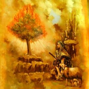 Mozes in Sharmel-Sheikh